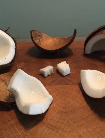 Hoe maak je een kokosnoot open? Het openen van een kokosnoot is nog niet zo eenvoudig. Met deze handleiding en stappenplan gaat het je zeker lukken!