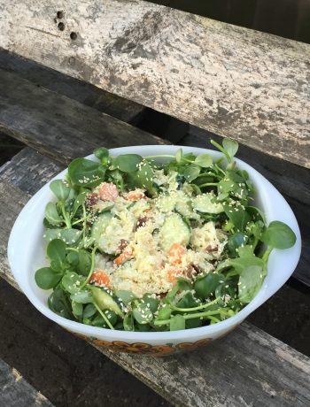 Frisse salade van koolrabi en zomerpostelein. Een heerlijke gezonde, makkelijke en snelle salade. Geschikt als lunch of bij je avondmaaltijd.
