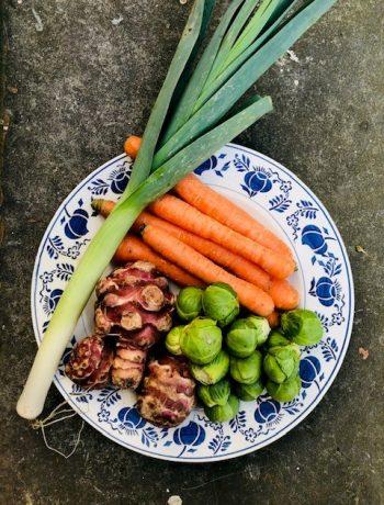 Seizoensgroenten februari met bijpassende recepten. Heerlijke en gezonde recepten op basis van groenten uit het seizoen. Veelal vegetarisch en sommige ook veganistisch. Zowel hoofdgerechten als voorgerechten, soepen, salades en ander lekker eten.