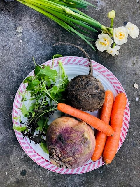 Seizoensgroenten maart met bijpassende recepten. Heerlijke en gezonde recepten op basis van groenten uit het seizoen. Veelal vegetarisch en sommige ook veganistisch. Zowel hoofdgerechten als voorgerechten, soepen, salades en ander lekker eten.